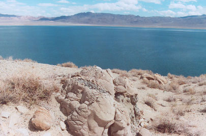 Tufa at Walker Lake, NV
